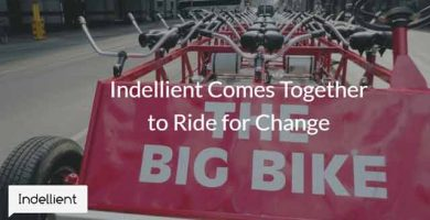 Close up photo of a red, 30 seat bicycle with the words The Big Bike at back of it